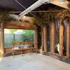 未来工房の森、オープン!