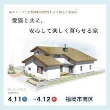 愛猫と共に、安心して楽しく暮らせる家。/福岡市南区